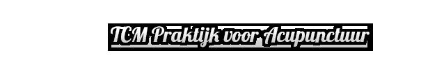https://www.acupunctuurspijkenisse.nl